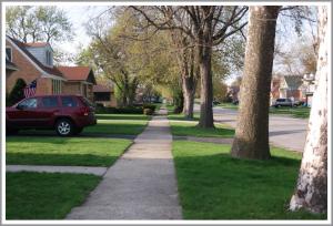 Neighborhood for your Chicago Externship.